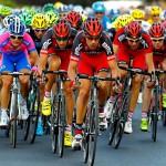Build a Bike Rack for the Tour de France