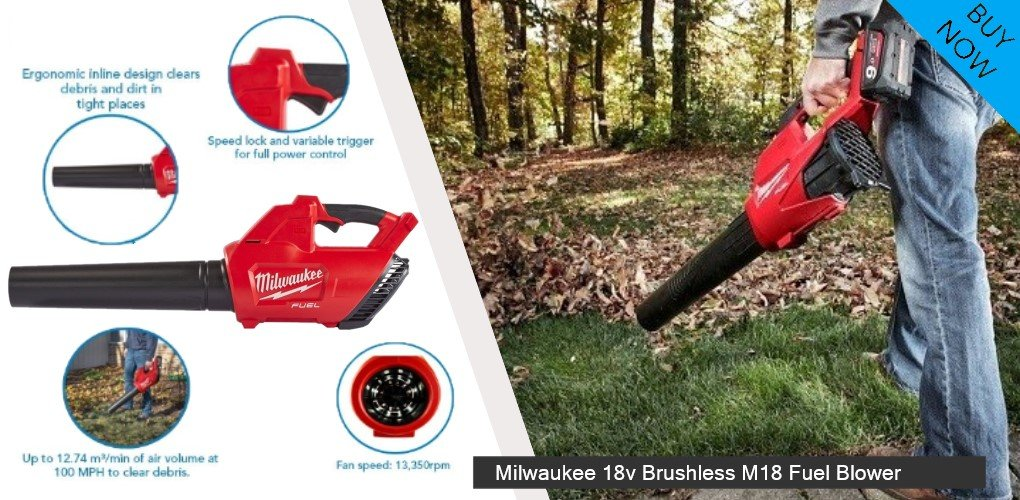 What is a Leaf Blower?
