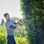 Hedge Trimmers: Which One Should I Buy?