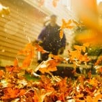 leaf blowers buyers guide