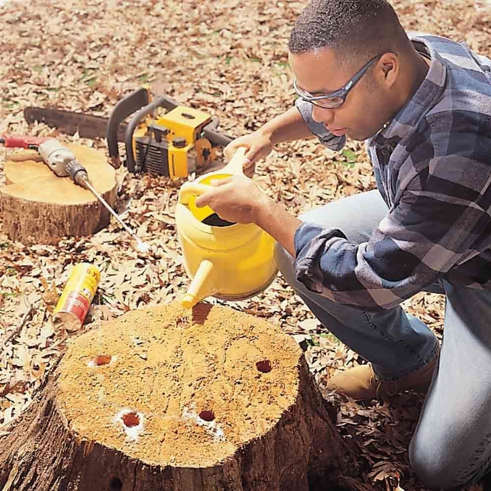 chemical tree stump removal